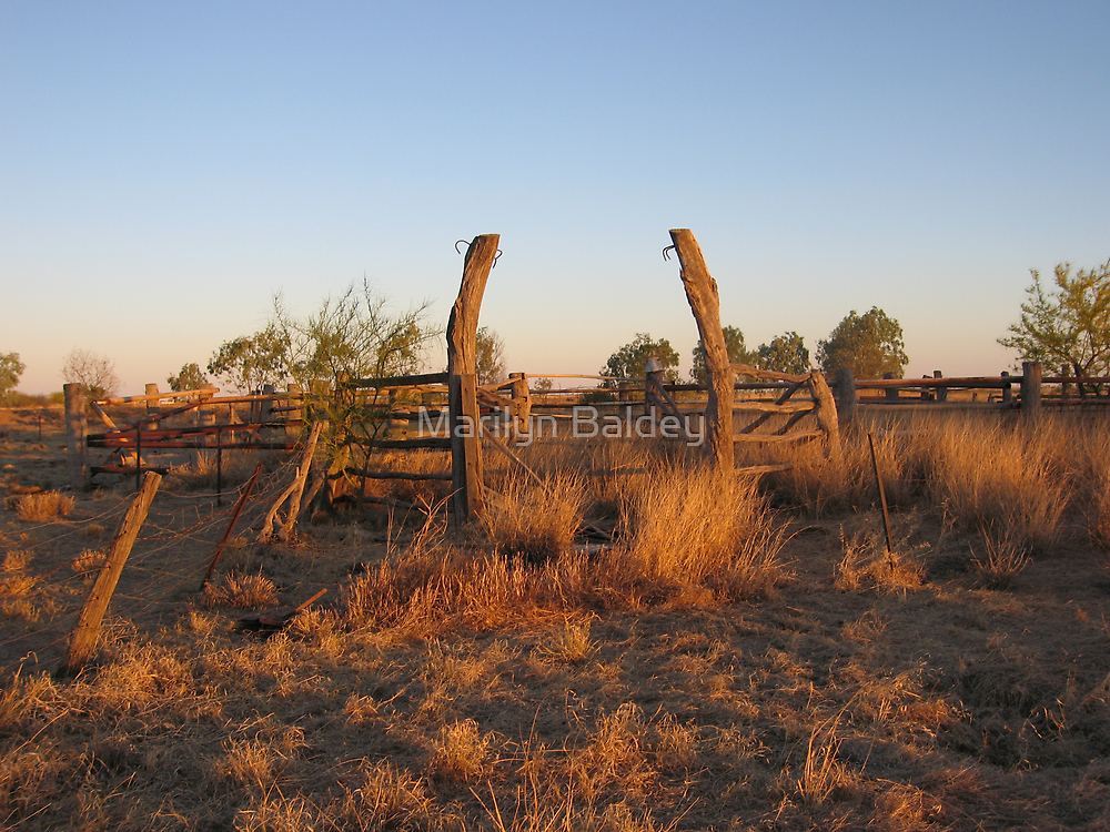 Wooden animal fence out back Winton, Qld. Australia by Marilyn Baldey