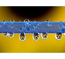 Sunflower tears Photographic Print