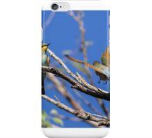 Rainbow Bee-Eaters iPhone Case/Skin