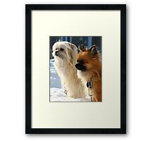 Jello and Vanille Framed Print