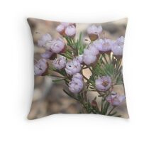 Verticordia Plumosa - Pretty in Pink (Critically Endangered) Throw Pillow