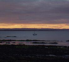 St Andrews rocking on the waves by Natasha Lovik