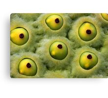 Macro - What is it? Canvas Print