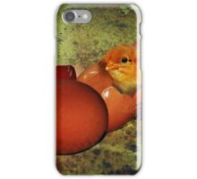 Who was first ? The egg, or the chicken ?  iPhone Case/Skin
