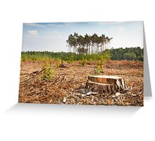 Woods lone trunk in deforestation Greeting Card