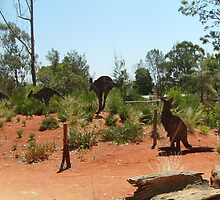 Flight of the Kangaroos by skyhorse