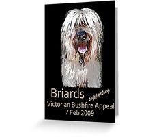 Briards Bushfire Appeal Greeting Card