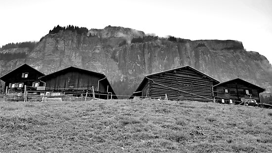 Farmhouse Grisons by itchingink