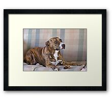 Can I have it now Master Framed Print