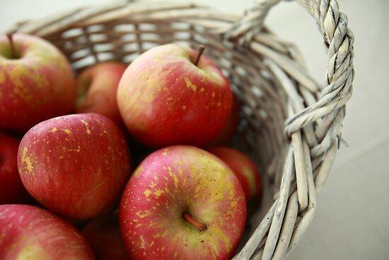 apples by dydydada