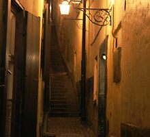 Street at Night by Antanas