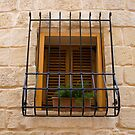 Window by Christian  Zammit