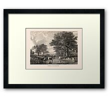 Evening in the Meadows Framed Print