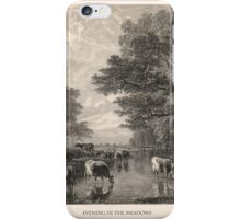 Evening in the Meadows iPhone Case/Skin