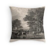 Evening in the Meadows Throw Pillow