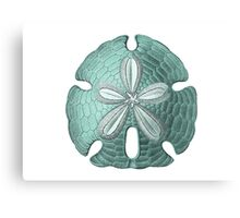Antique Sea Sand Dollar Illustration Canvas Print