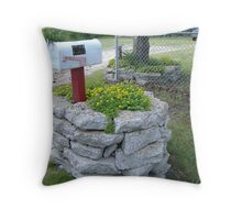 MAIL BOX Throw Pillow
