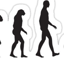 Evolution Cycling Sticker