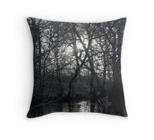 reflection in the snow Throw Pillow