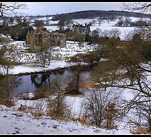 Bolton Abbey from the grassy (snowy) knoll by Shaun Whiteman