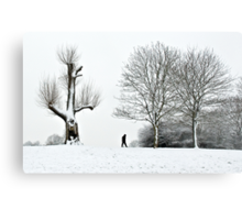 Passing of the Blizzard Metal Print