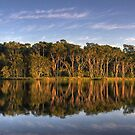 Morning Reflections 2 by Mike Salway