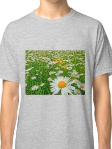Field of oxeye daisy flower Classic T-Shirt