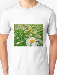 Field of oxeye daisy flower T-Shirt