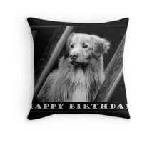 Birthday Card No 5 Throw Pillow