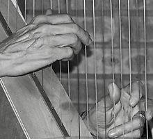 The Music Never Stops. . .  by Rachel Sonnenschein