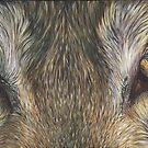 Wolf Eyes by artbyakiko
