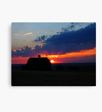 red rubber ball Canvas Print