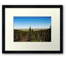 Cypress lookout Framed Print