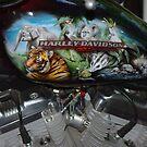 Australia Zoo Raffle by bygeorge