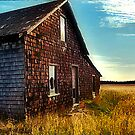 Homestead by RobertCharles