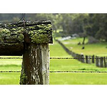 Farm Fencing Photographic Print