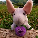 Eeyore with Thistle by Diana Forgione