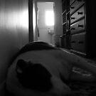 Hallway Sleeper by Dylan DeLosAngeles