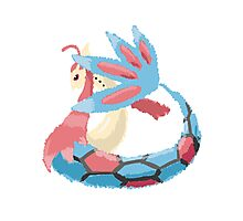Kelly's Milotic (No outline) Photographic Print