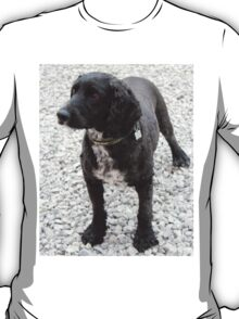 Bailey another family pet... T-Shirt