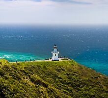 Cape Reinga, New Zealand by Alexander Efimov