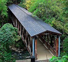 Roswell Mill Foot Bridge by Janie Oliver