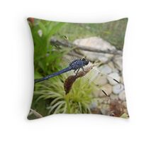 Black Dragon Throw Pillow