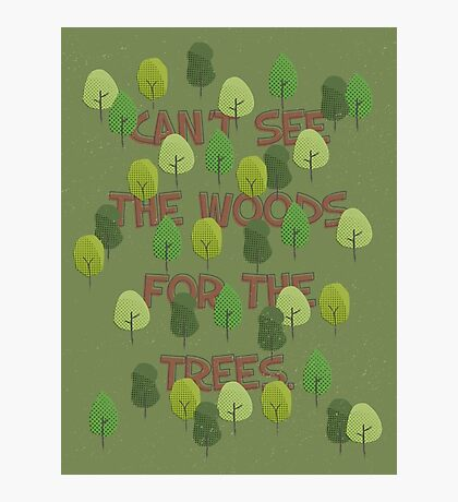 Can't see the woods for the trees Photographic Print