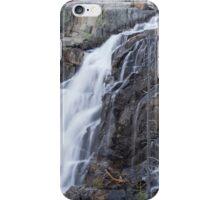 Upper Eagle Falls iPhone Case/Skin