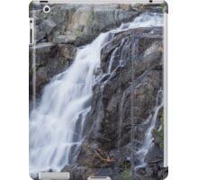 Upper Eagle Falls iPad Case/Skin
