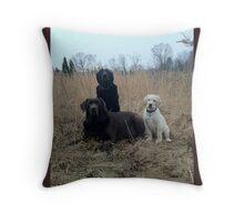 lab trio Throw Pillow
