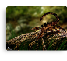 Escorpion Robot Canvas Print