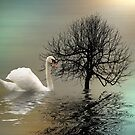 Upon the pond by shalisa