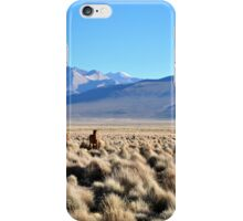 Grazing on volcanic plains iPhone Case/Skin